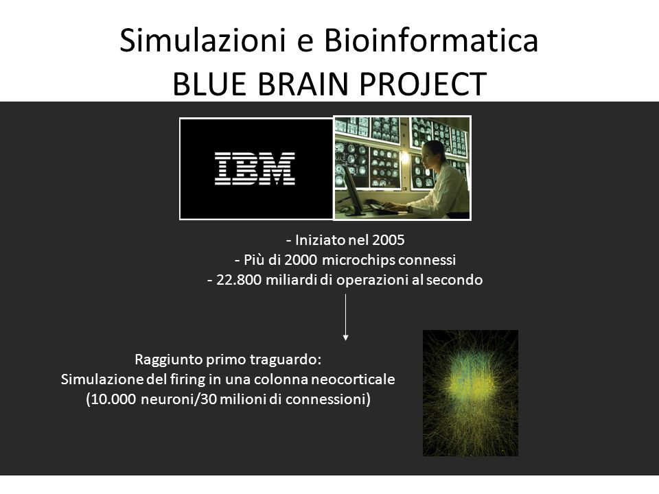 Simulazioni e Bioinformatica BLUE BRAIN PROJECT