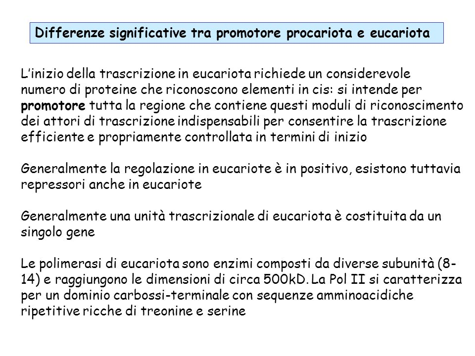 Differenze significative tra promotore procariota e eucariota