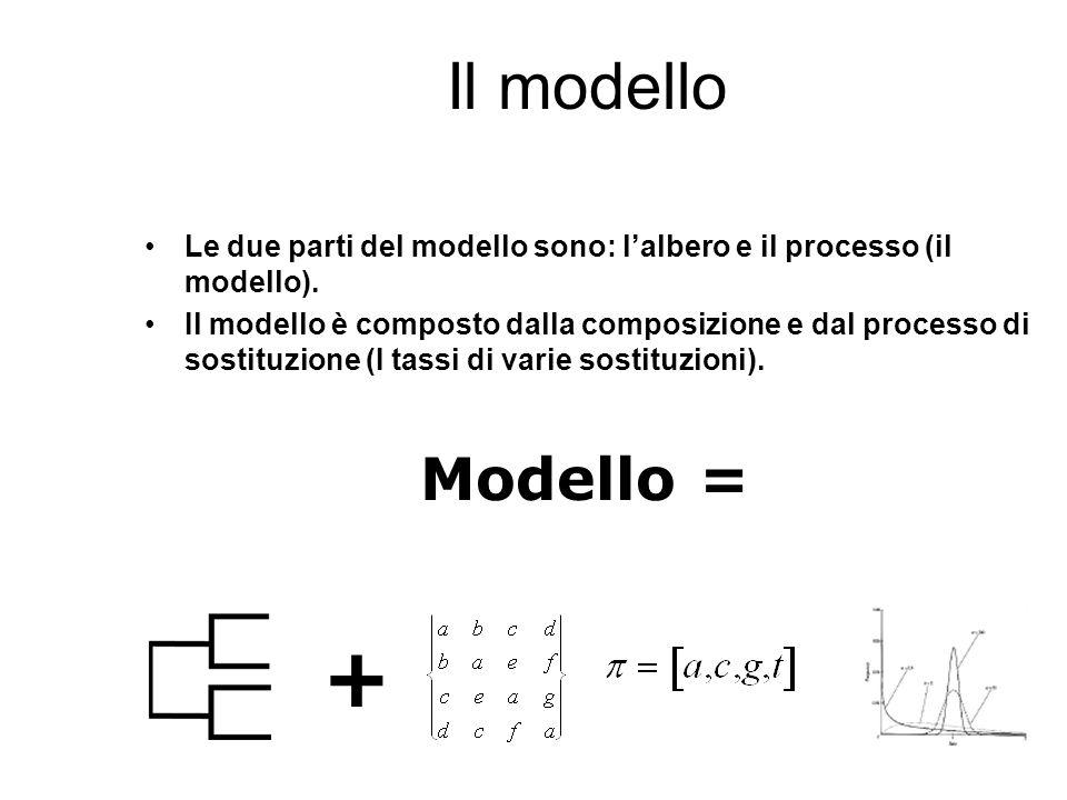 Il modello Le due parti del modello sono: l'albero e il processo (il modello).