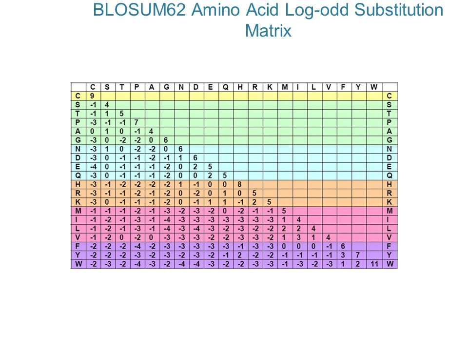 BLOSUM62 Amino Acid Log-odd Substitution Matrix