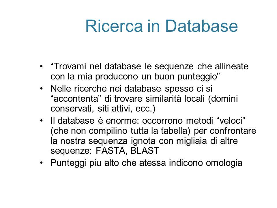 Ricerca in Database Trovami nel database le sequenze che allineate con la mia producono un buon punteggio