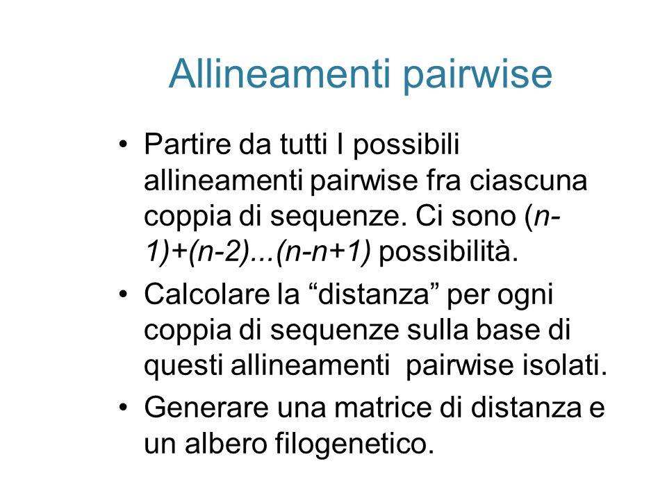 Allineamenti pairwise