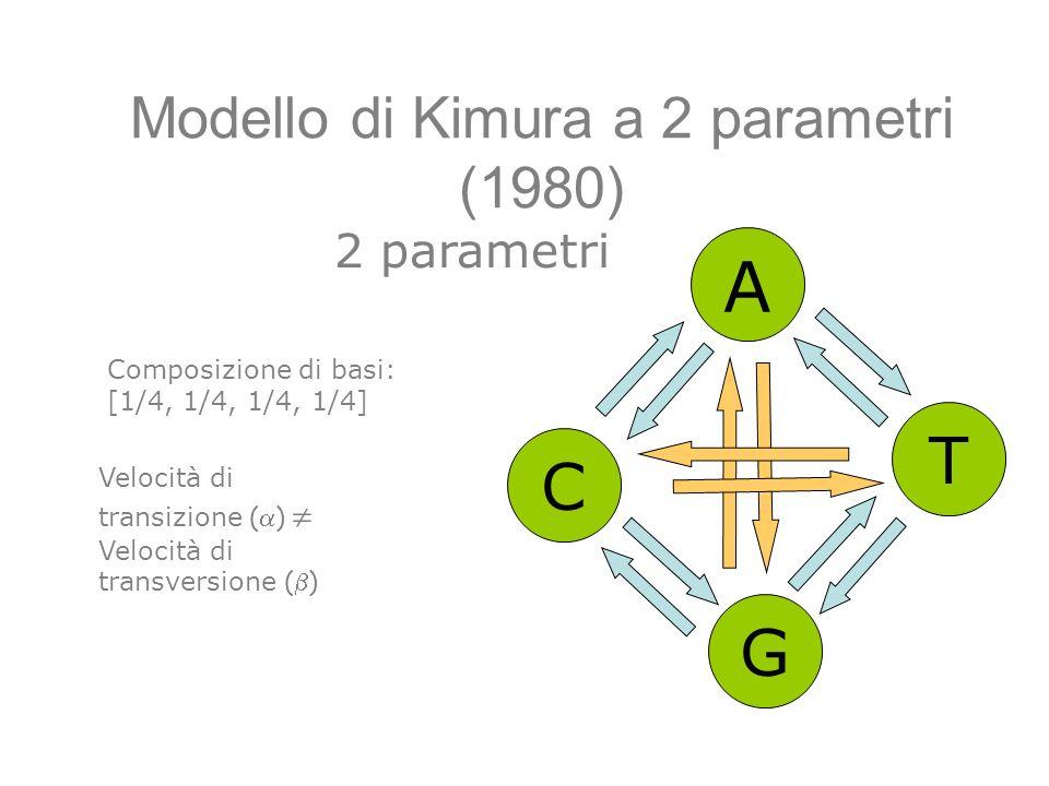 Modello di Kimura a 2 parametri (1980)
