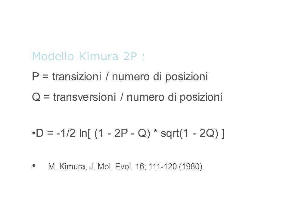 Modello Kimura 2P : P = transizioni / numero di posizioni. Q = transversioni / numero di posizioni.