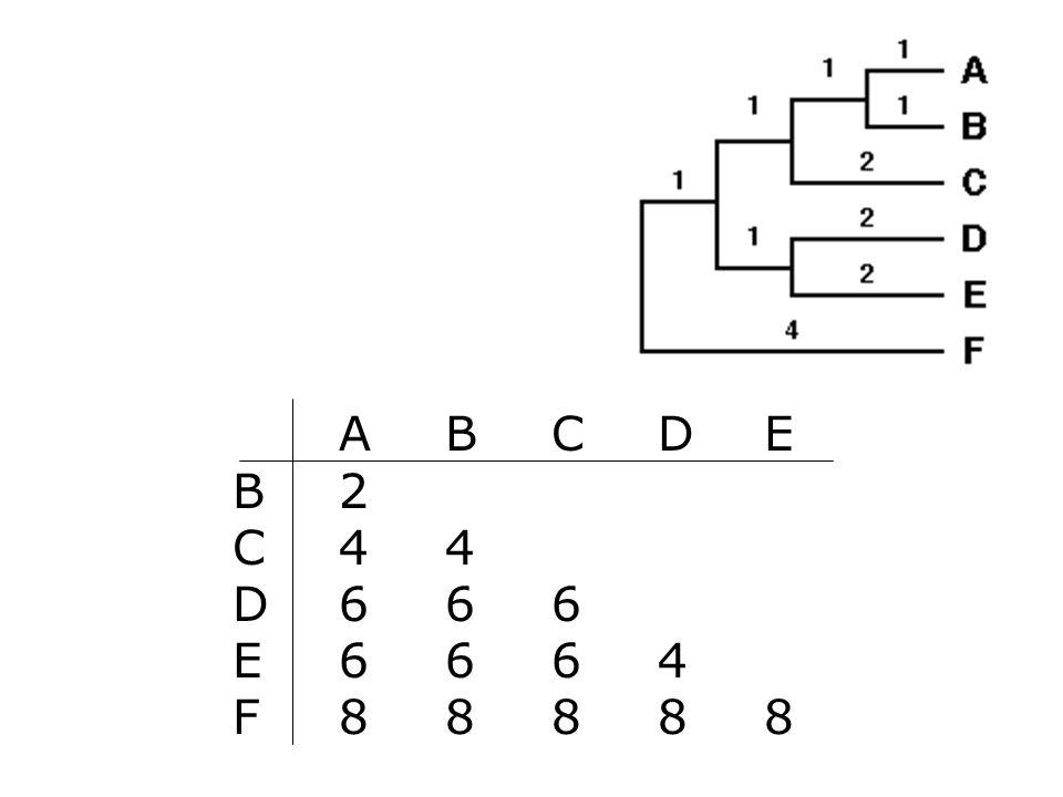 A B C D E B 2 C 4 4 D 6 6 6 E 6 6 6 4 F 8 8 8 8 8