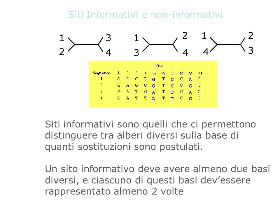 Siti Informativi e non-informativi