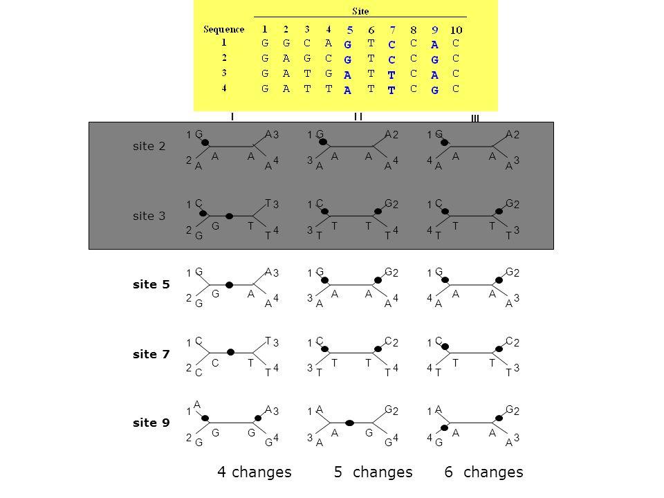 4 changes 5 changes 6 changes site 2 site 3 site 5 site 7 site 9