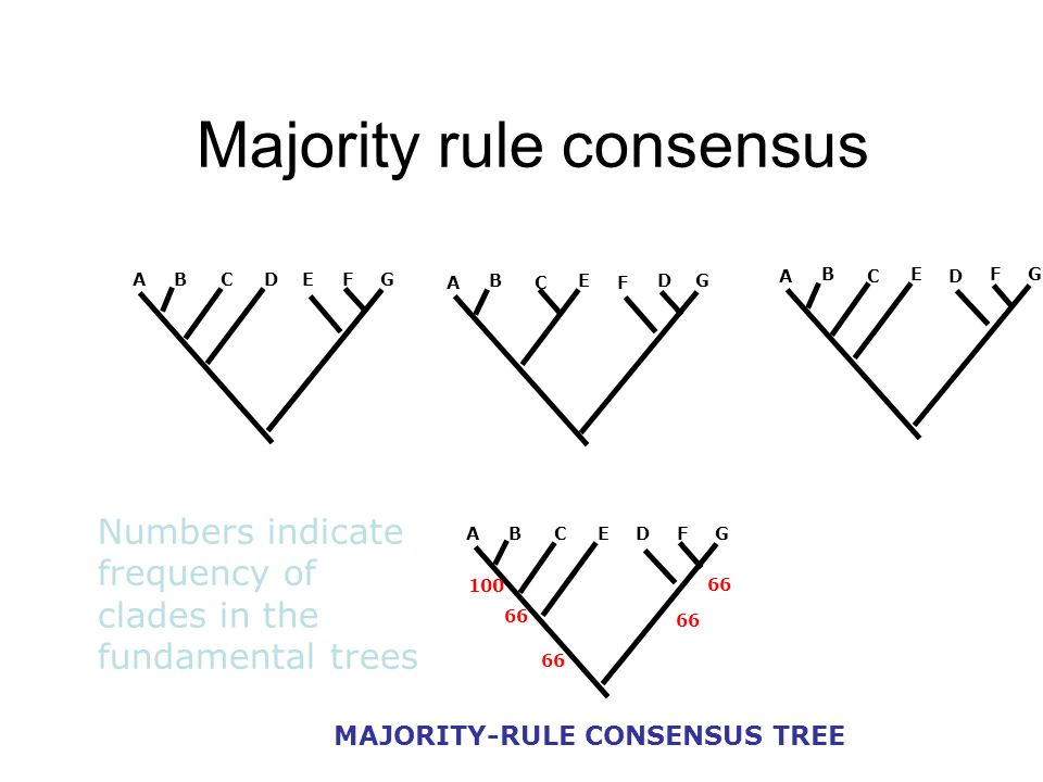 Majority rule consensus