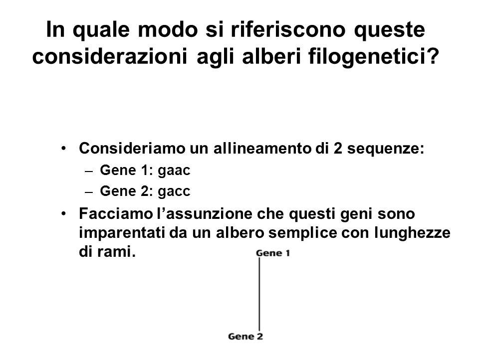 In quale modo si riferiscono queste considerazioni agli alberi filogenetici