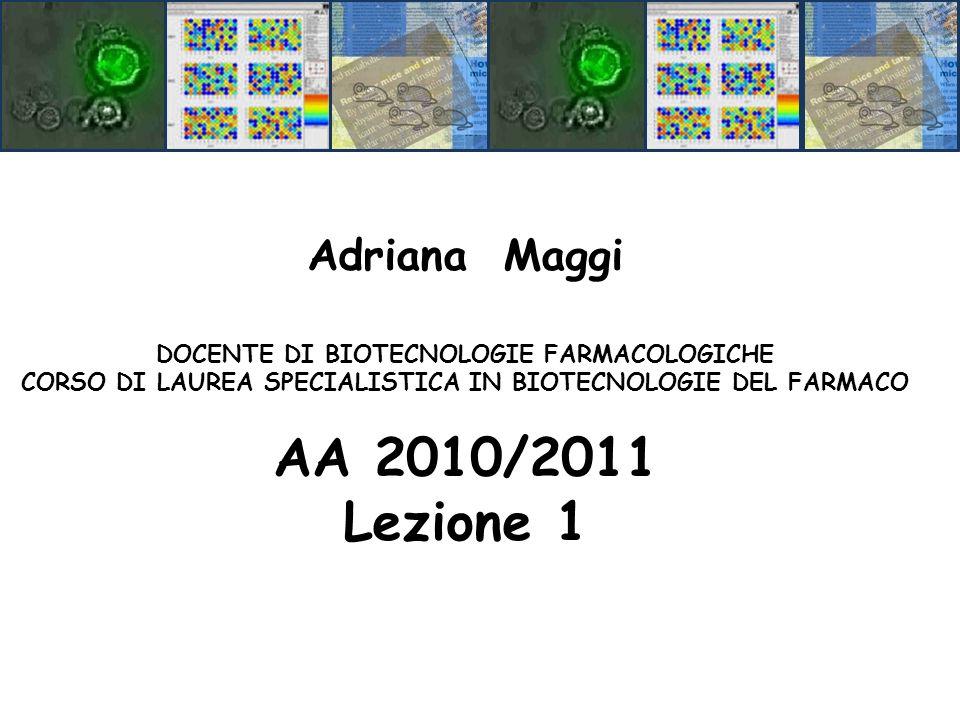 AA 2010/2011 Lezione 1 Adriana Maggi