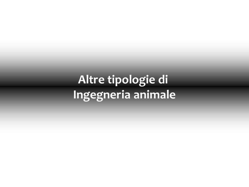 Altre tipologie di Ingegneria animale