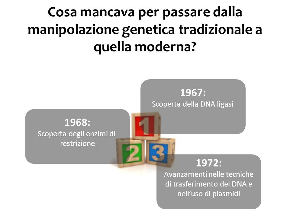 Cosa mancava per passare dalla manipolazione genetica tradizionale a quella moderna