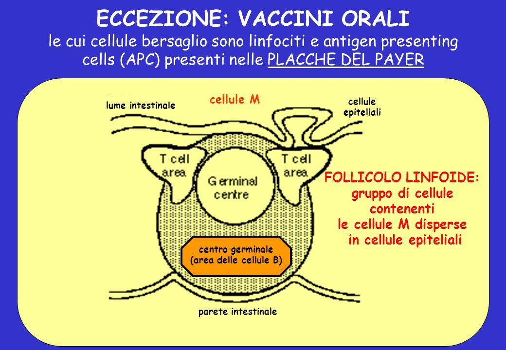 ECCEZIONE: VACCINI ORALI gruppo di cellule contenenti