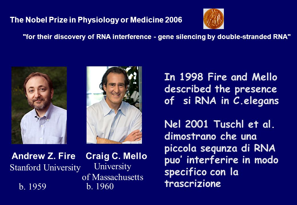 In 1998 Fire and Mello described the presence of si RNA in C.elegans