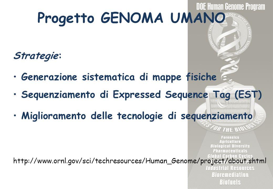 Progetto GENOMA UMANO Strategie: