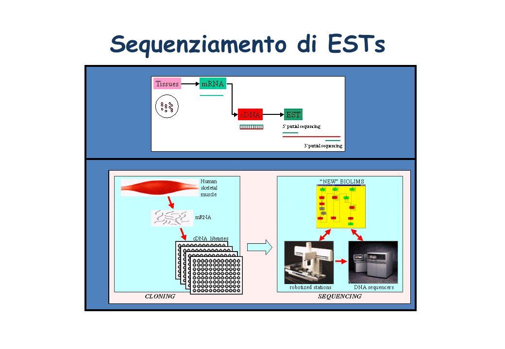 Sequenziamento di ESTs