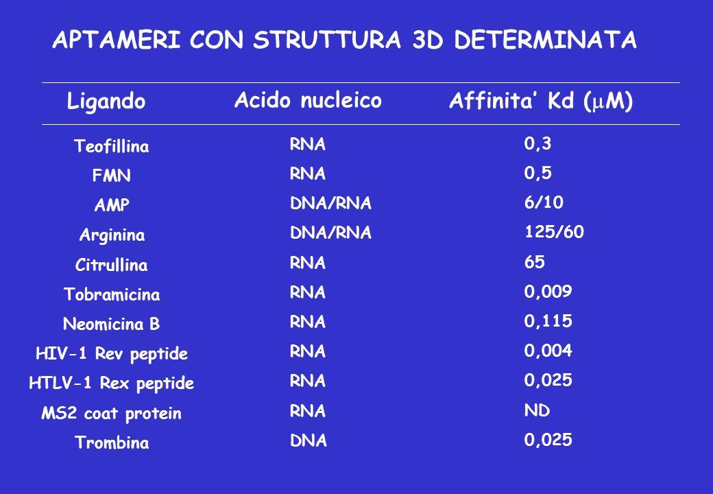 APTAMERI CON STRUTTURA 3D DETERMINATA