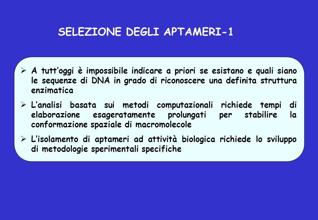 SELEZIONE DEGLI APTAMERI-1