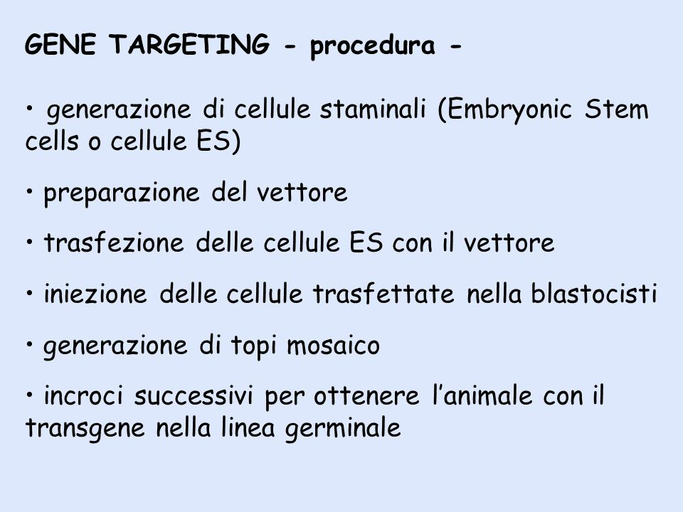 GENE TARGETING - procedura -
