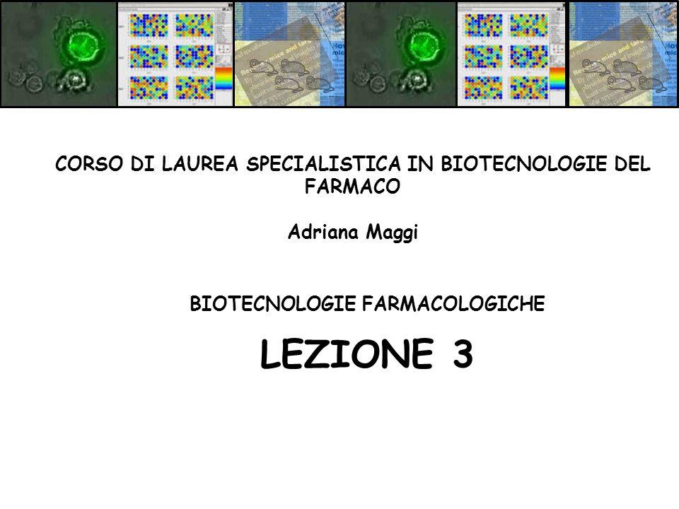 LEZIONE 3 CORSO DI LAUREA SPECIALISTICA IN BIOTECNOLOGIE DEL FARMACO