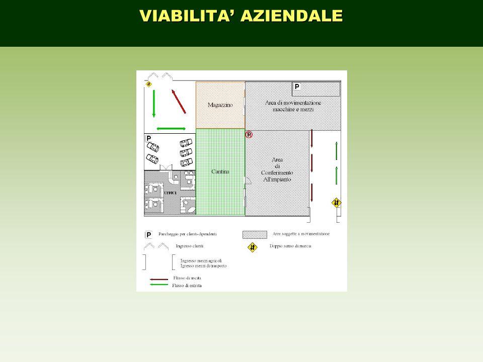 VIABILITA' AZIENDALE