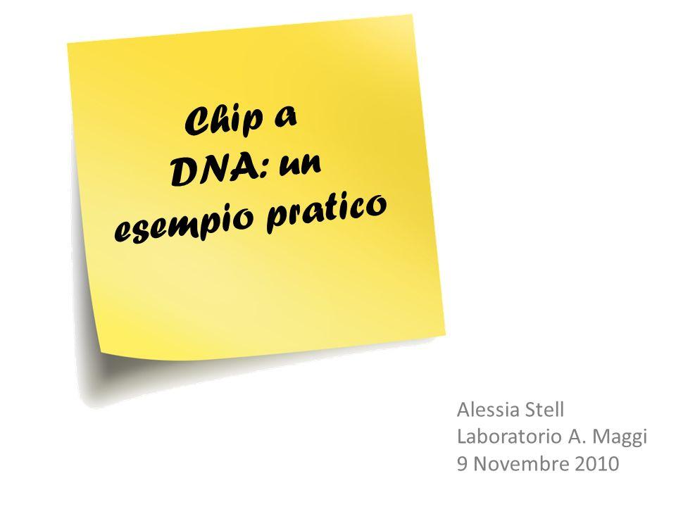 Chip a DNA: un esempio pratico