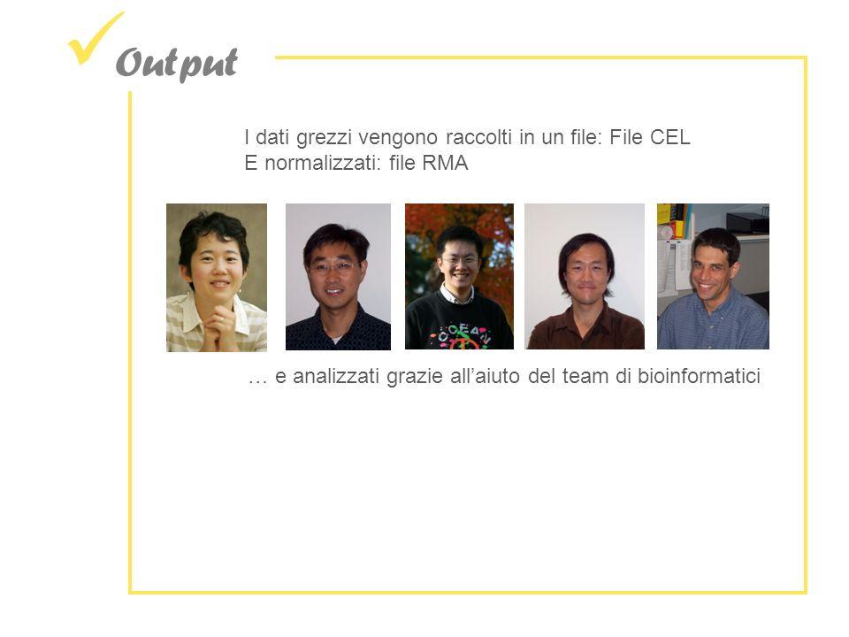Output I dati grezzi vengono raccolti in un file: File CEL