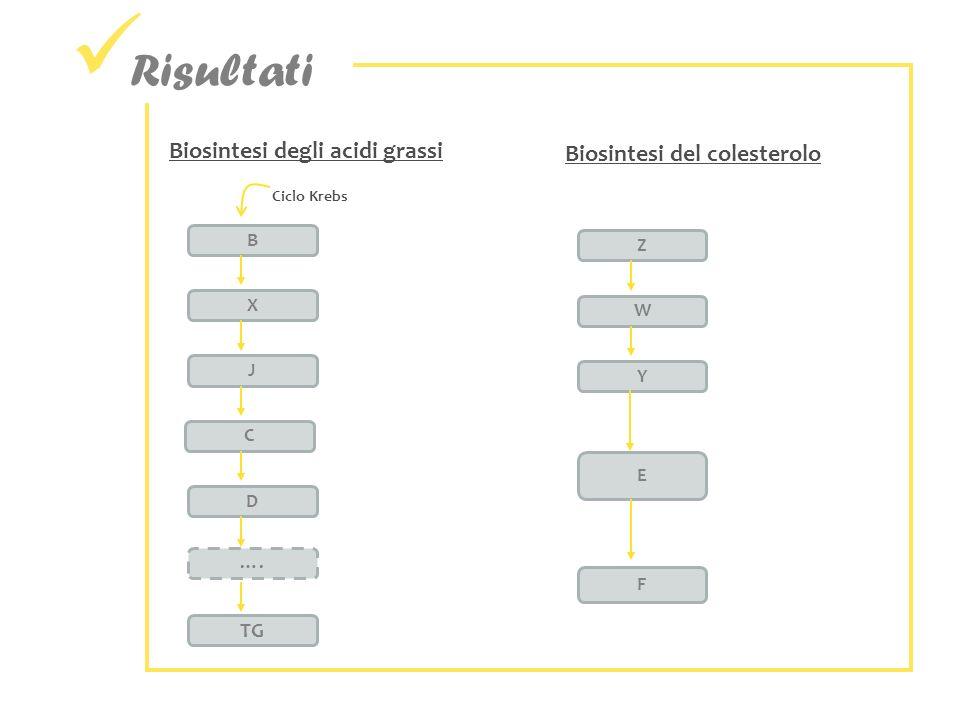 Risultati Biosintesi degli acidi grassi Biosintesi del colesterolo TG