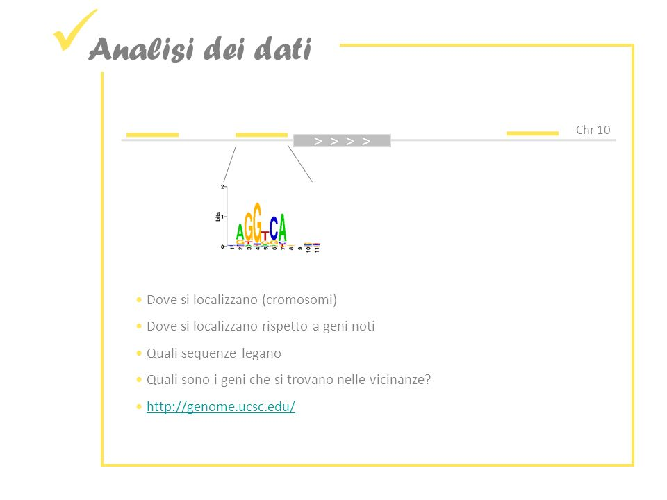 Analisi dei dati > > > > Dove si localizzano (cromosomi)