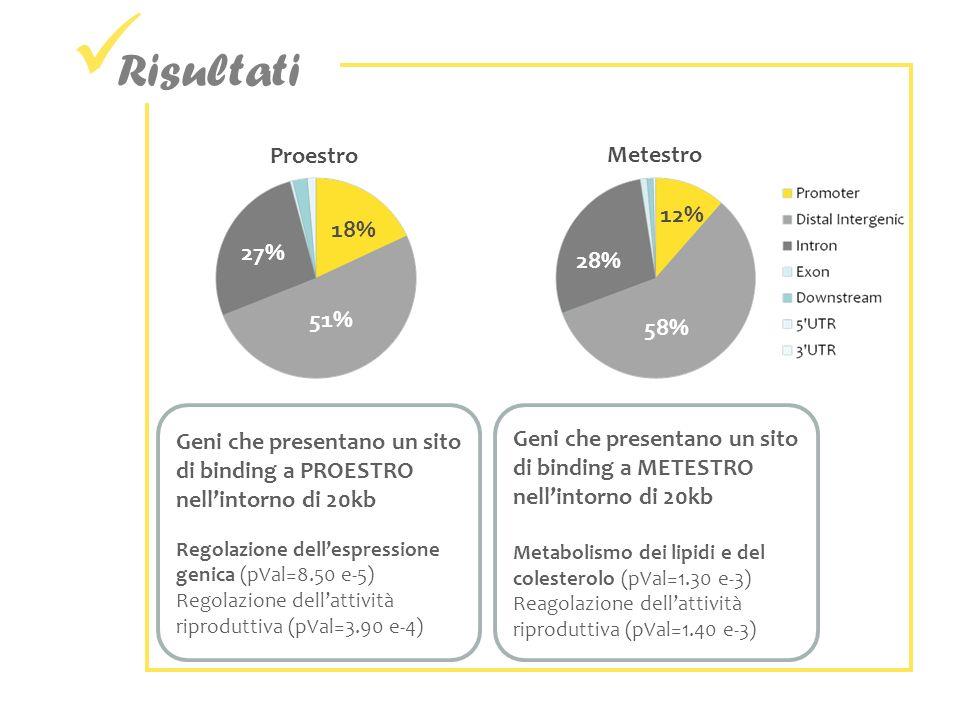 Risultati Proestro Metestro 12% 18% 27% 28% 51% 58%