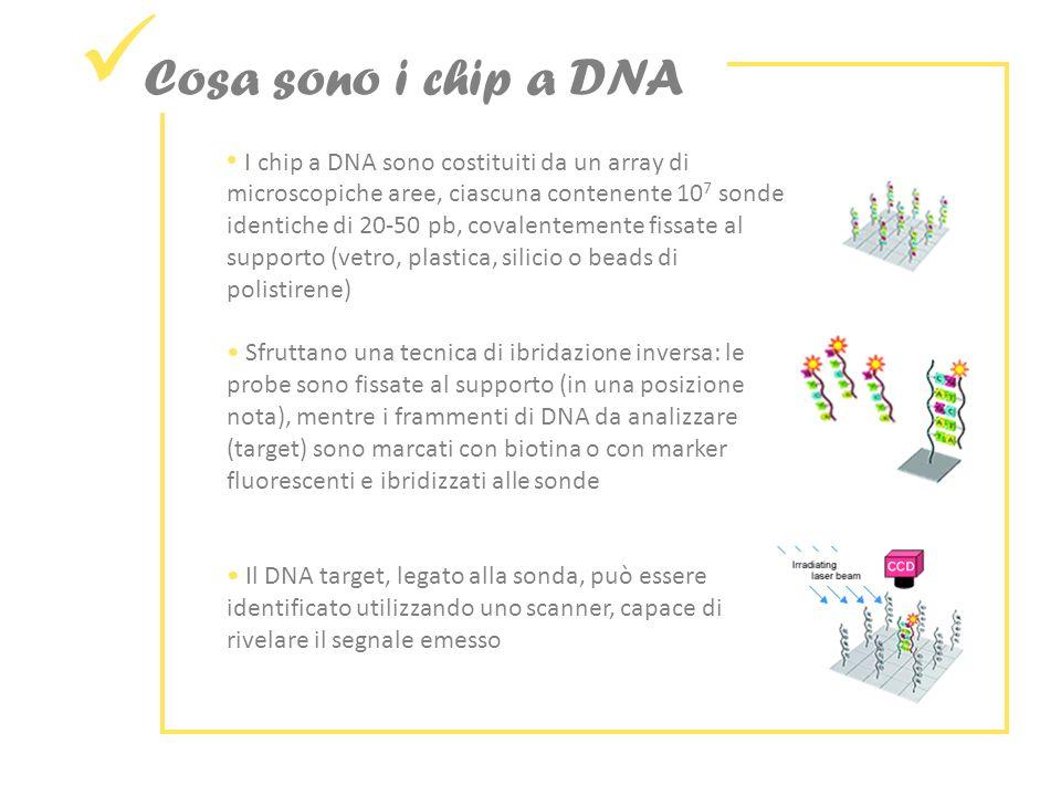 Cosa sono i chip a DNA