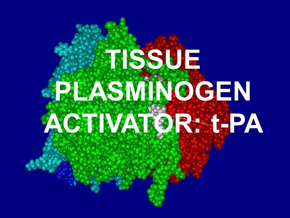 TISSUE PLASMINOGEN ACTIVATOR: t-PA
