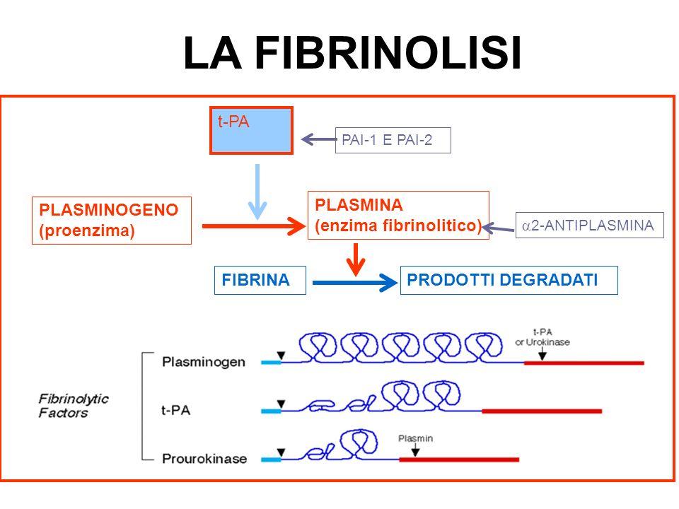 LA FIBRINOLISI t-PA PLASMINA (enzima fibrinolitico) PLASMINOGENO