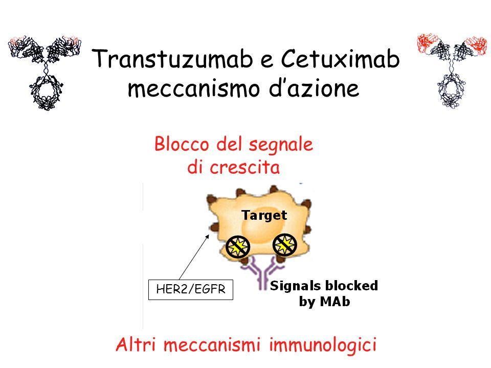 Altri meccanismi immunologici