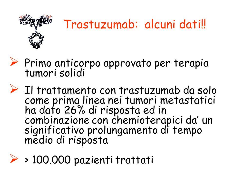 Trastuzumab: alcuni dati!!