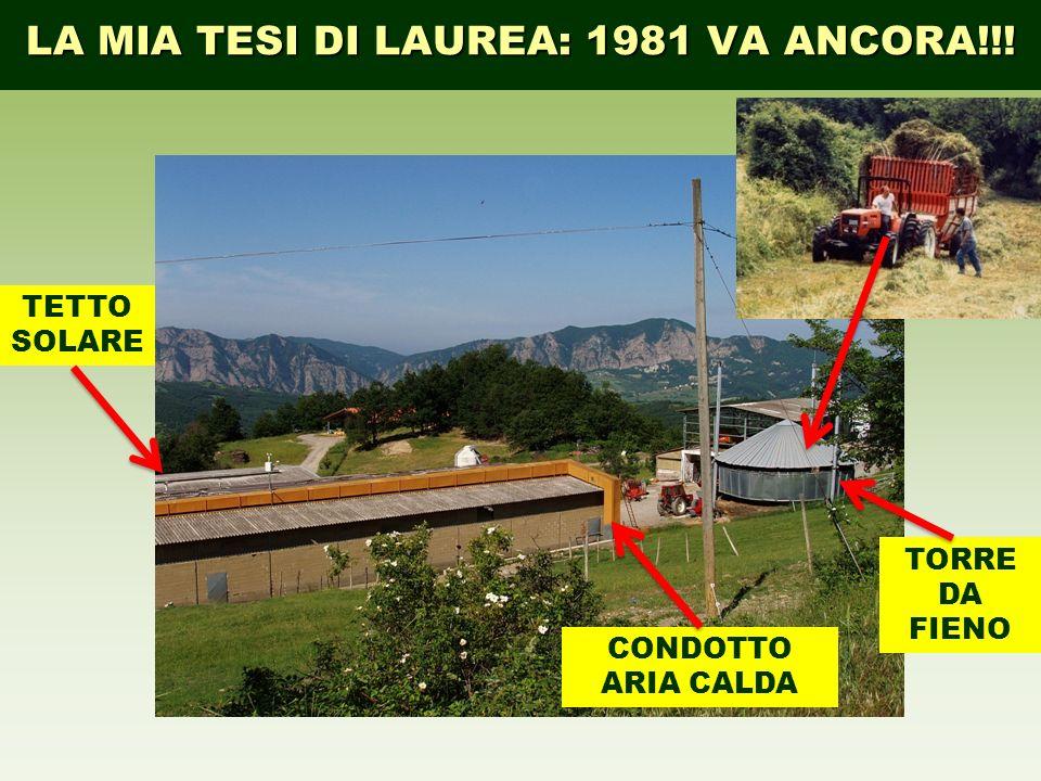 LA MIA TESI DI LAUREA: 1981 VA ANCORA!!!
