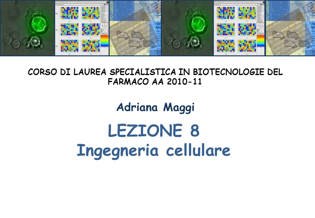 CORSO DI LAUREA SPECIALISTICA IN BIOTECNOLOGIE DEL FARMACO AA 2010-11