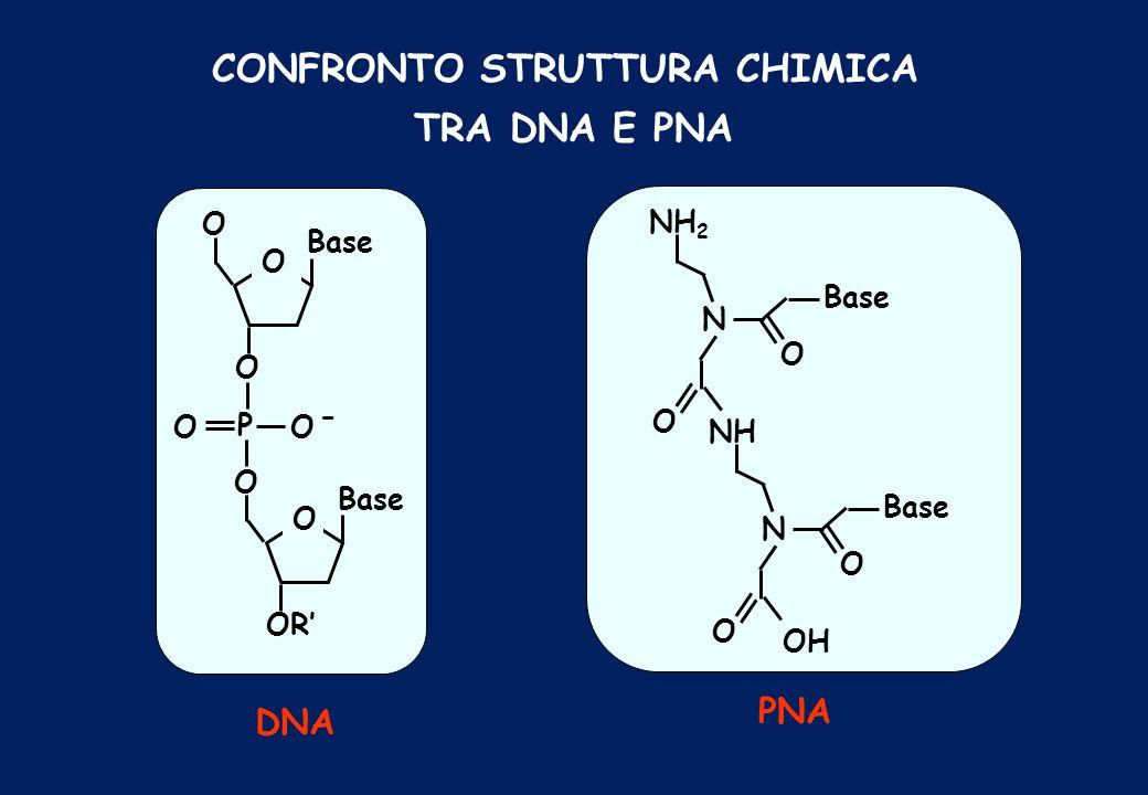 CONFRONTO STRUTTURA CHIMICA