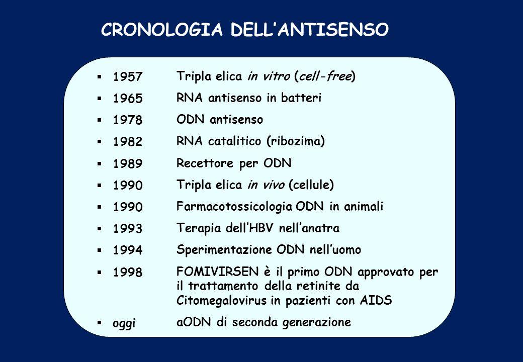 CRONOLOGIA DELL'ANTISENSO