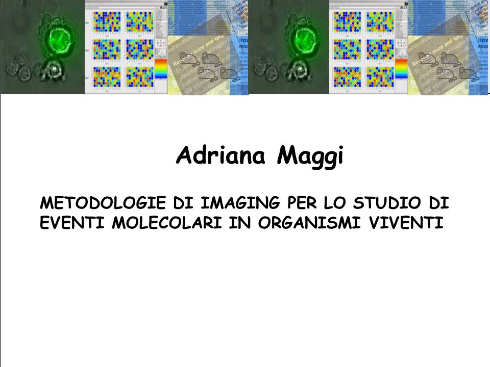 Adriana Maggi METODOLOGIE DI IMAGING PER LO STUDIO DI