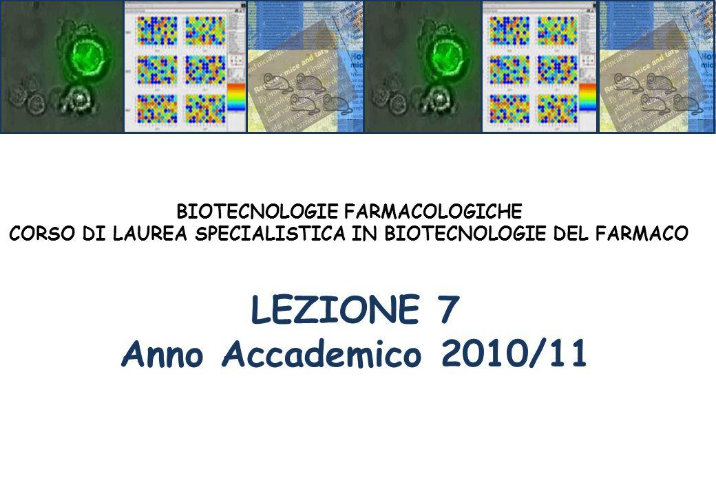 LEZIONE 7 Anno Accademico 2010/11