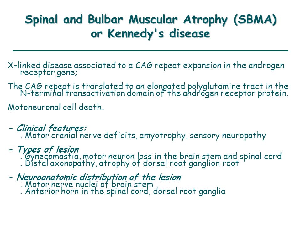 Spinal and Bulbar Muscular Atrophy (SBMA) or Kennedy s disease