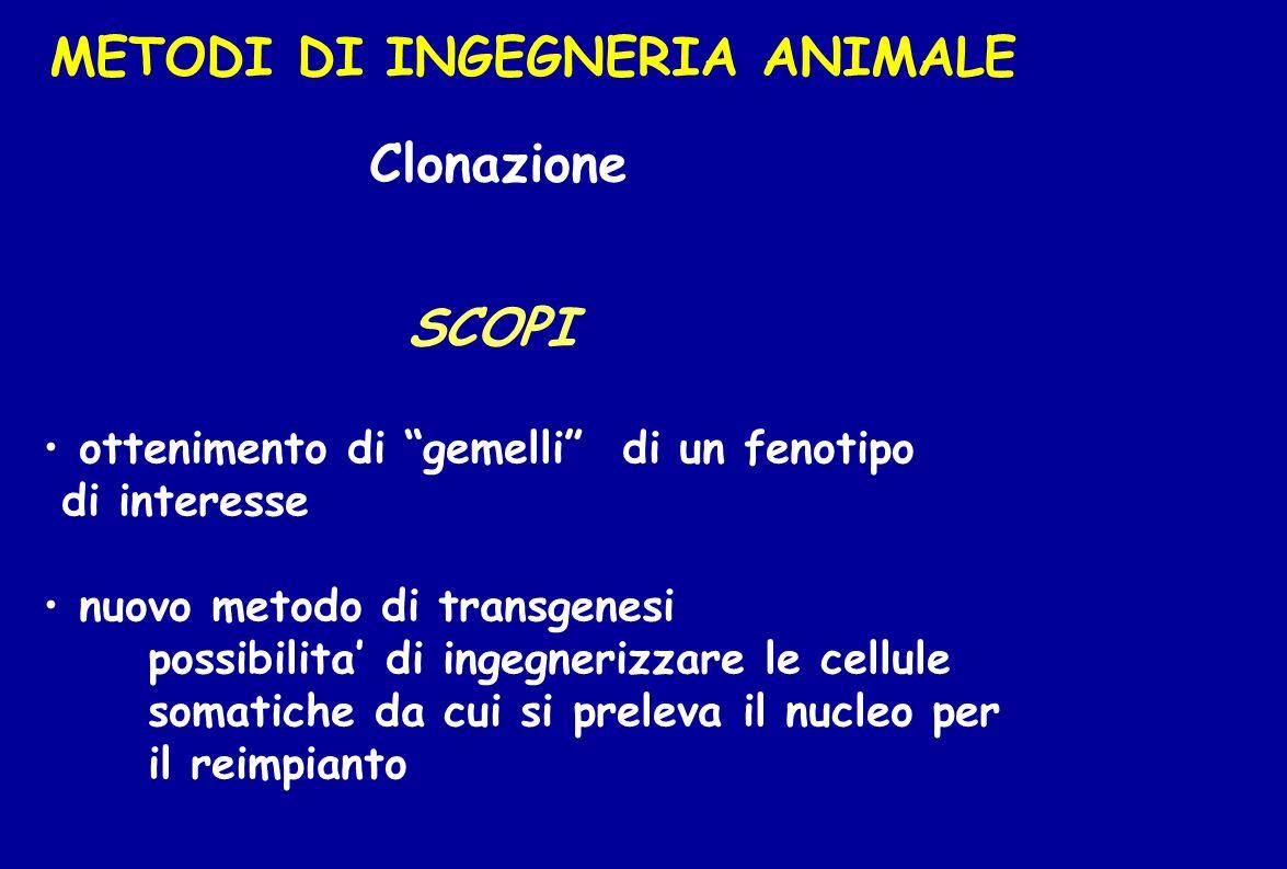 METODI DI INGEGNERIA ANIMALE Clonazione