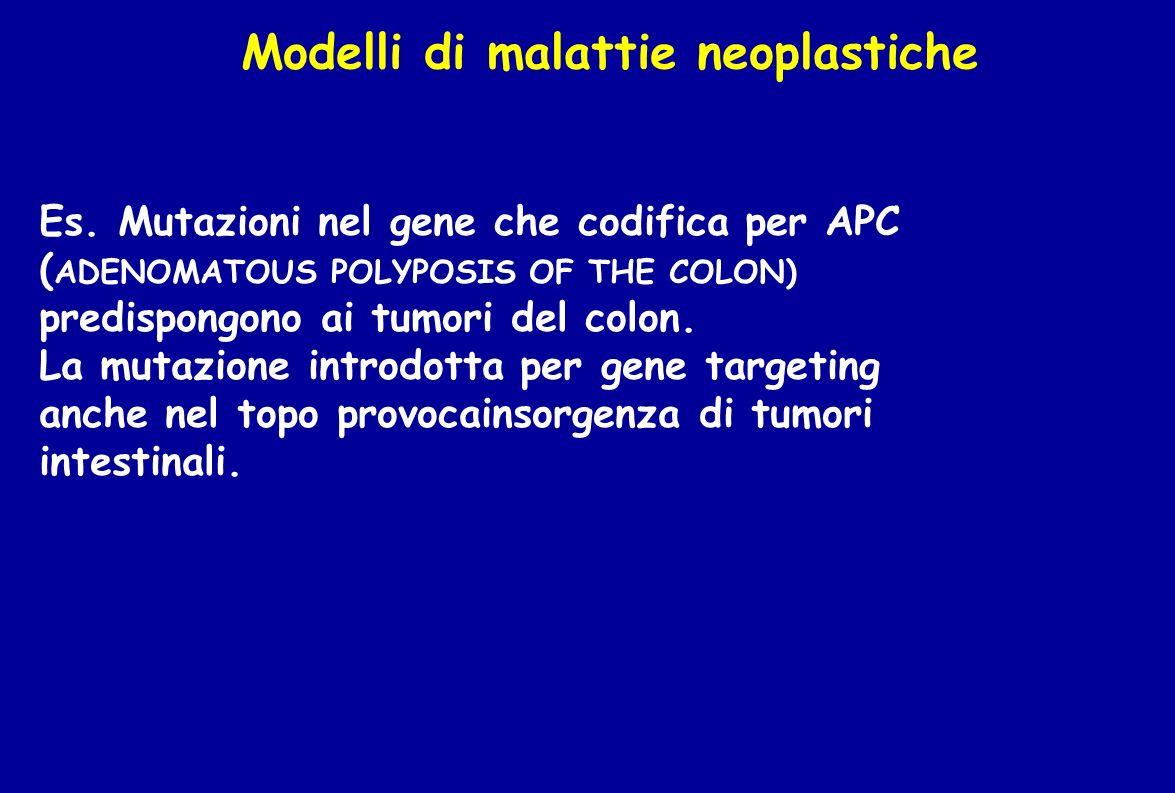 Modelli di malattie neoplastiche
