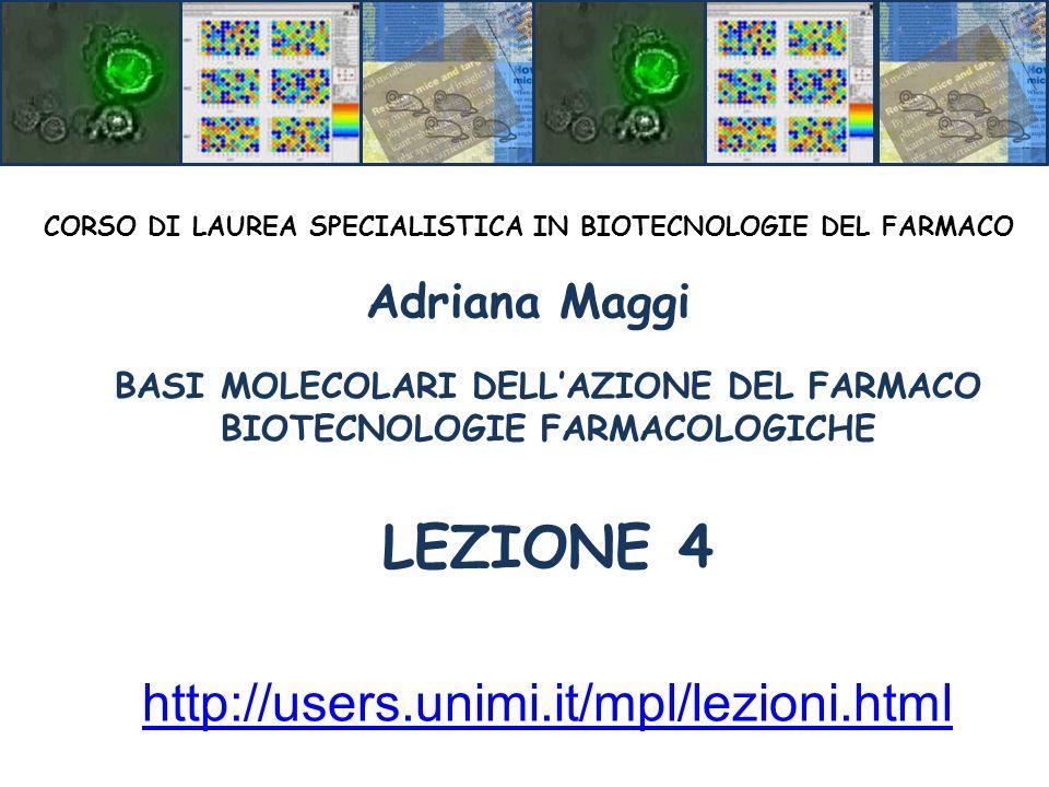 LEZIONE 4 http://users.unimi.it/mpl/lezioni.html Adriana Maggi