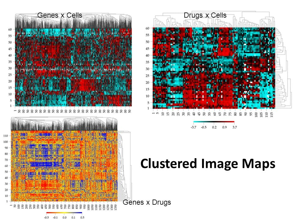 Drugs x Cells Genes x Cells Clustered Image Maps Genes x Drugs