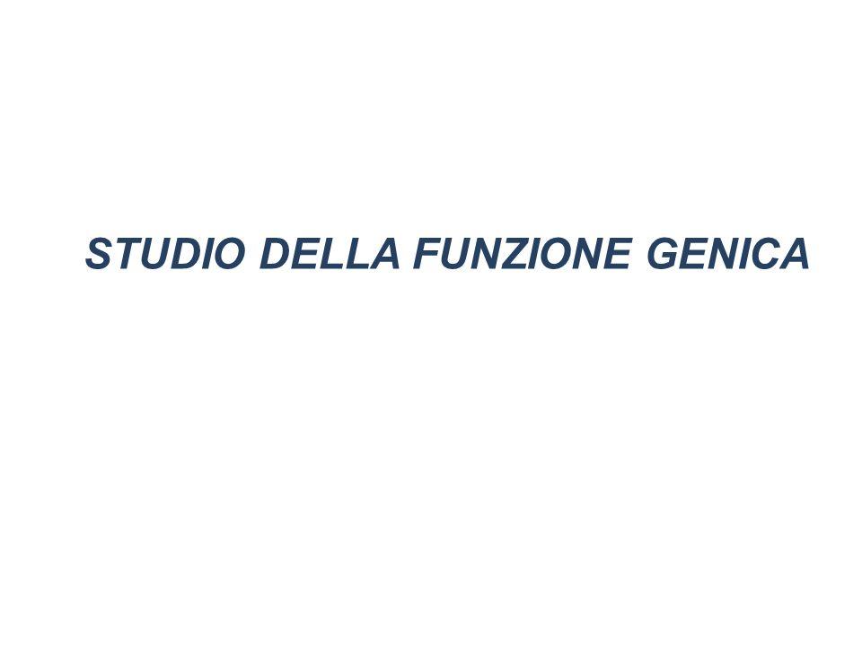 STUDIO DELLA FUNZIONE GENICA