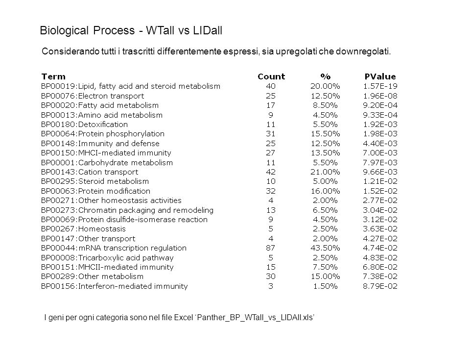 Biological Process - WTall vs LIDall