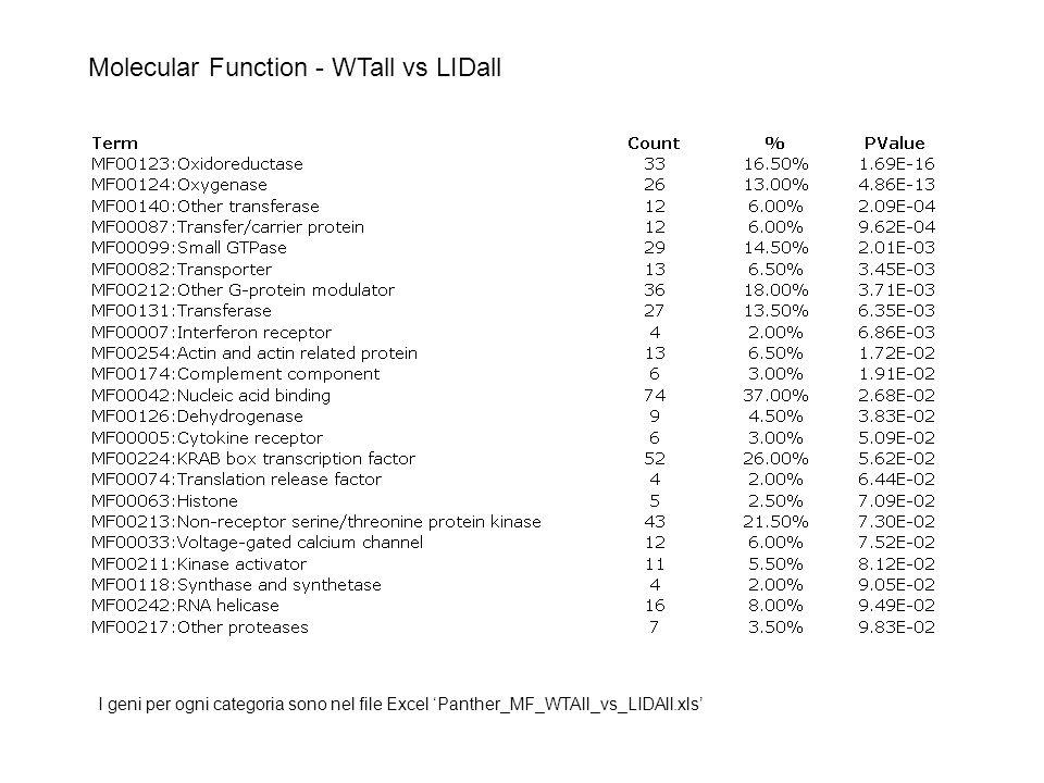Molecular Function - WTall vs LIDall