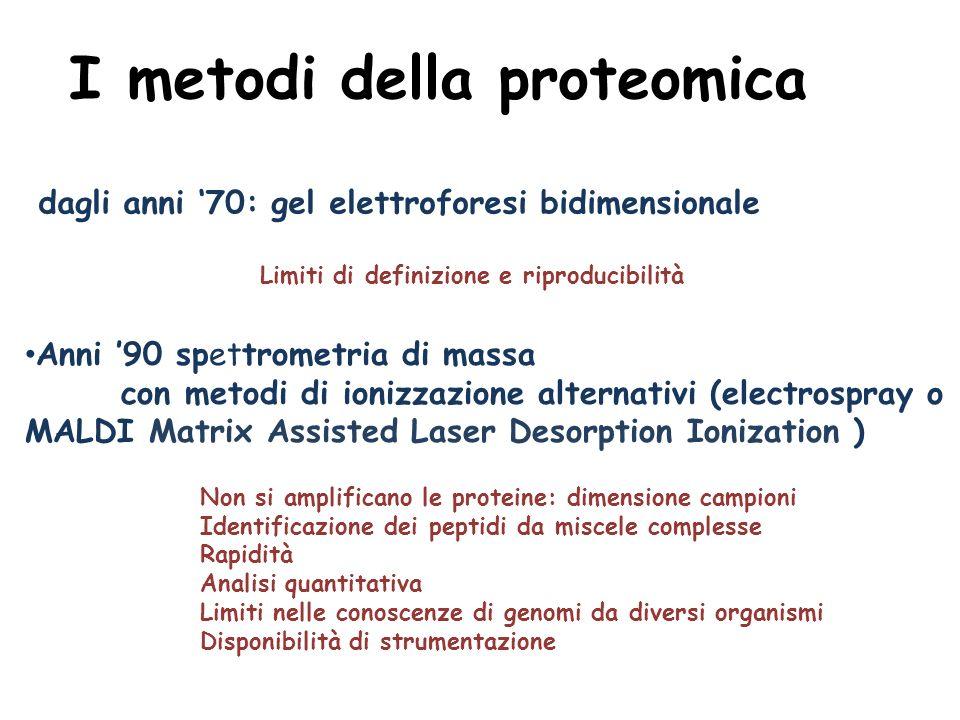 I metodi della proteomica